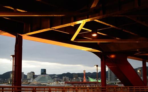 神戸大橋とポートタワー